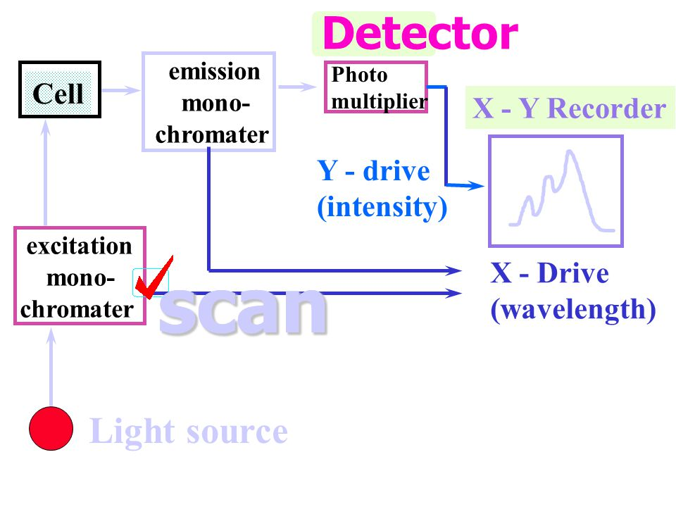 scan scan Detector Light source Cell X - Y Recorder Y - drive