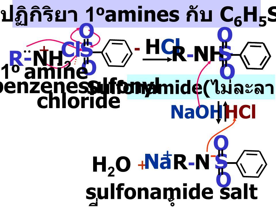 กลไกปฏิกิริยา 1oamines กับ C6H5SO2Cl Sulfonamide(ไม่ละลายน้ำ)
