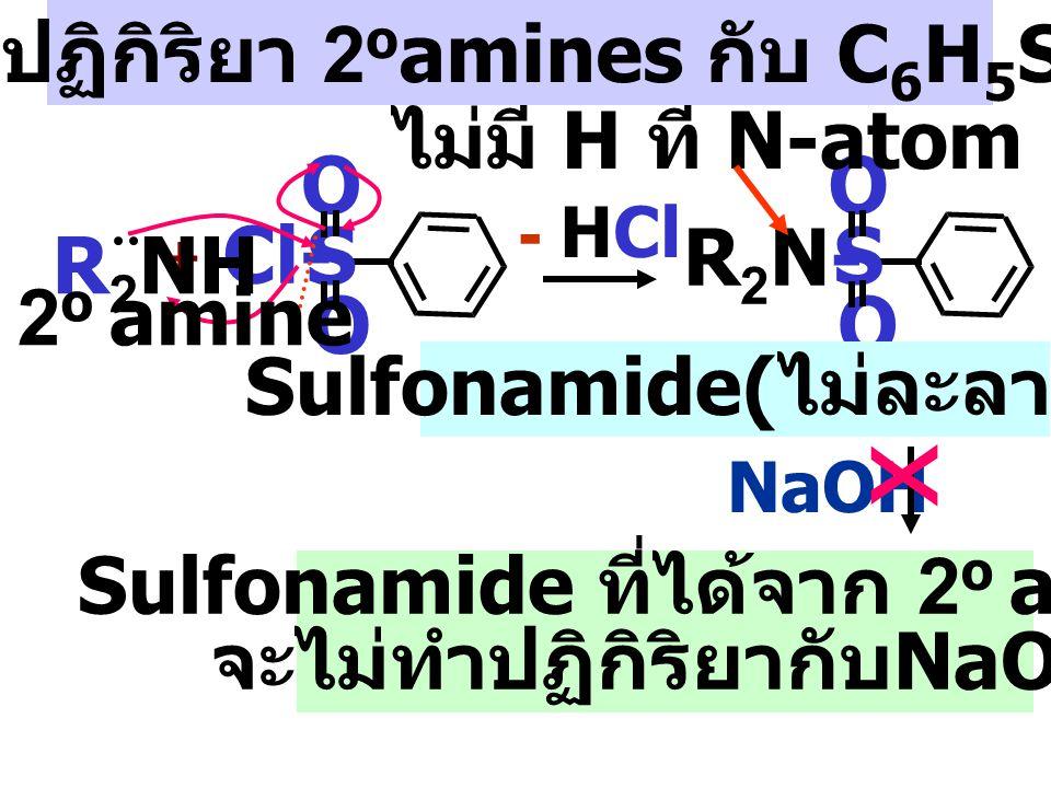 x กลไกปฏิกิริยา 2oamines กับ C6H5SO2Cl ไม่มี H ที่ N-atom S O R2N- S O
