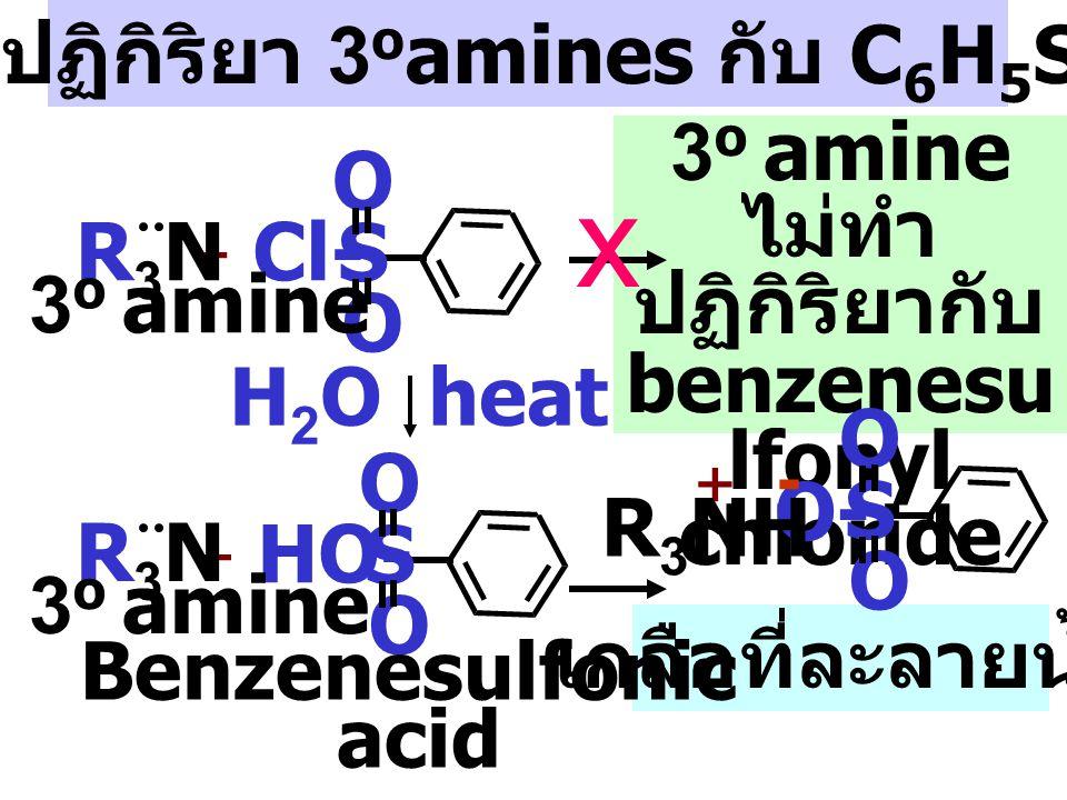 x กลไกปฏิกิริยา 3oamines กับ C6H5SO2Cl 3o amine ไม่ทำปฏิกิริยากับ O