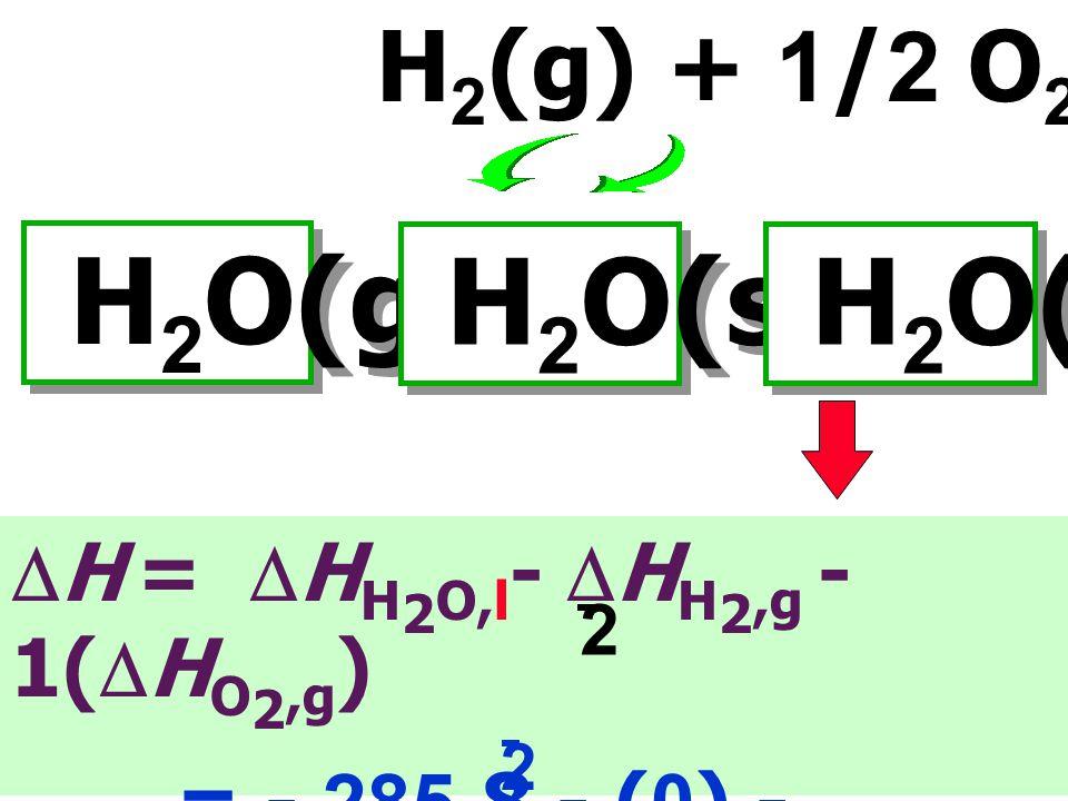 H2O(g) H2O(s) H2O(l) H2(g) + 1/2 O2(g)