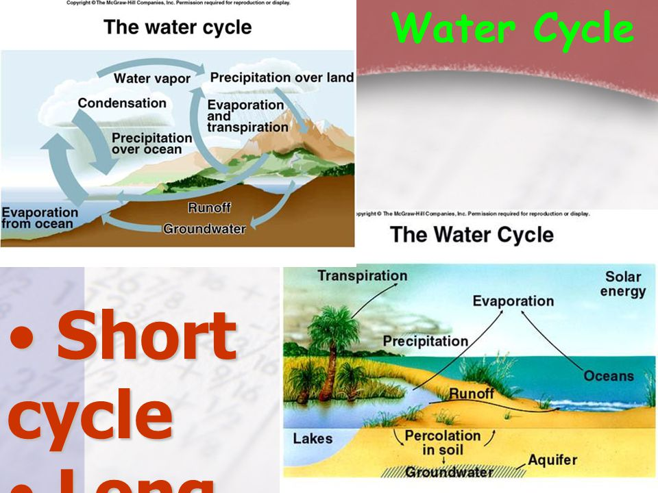 Water Cycle Short cycle Long cycle