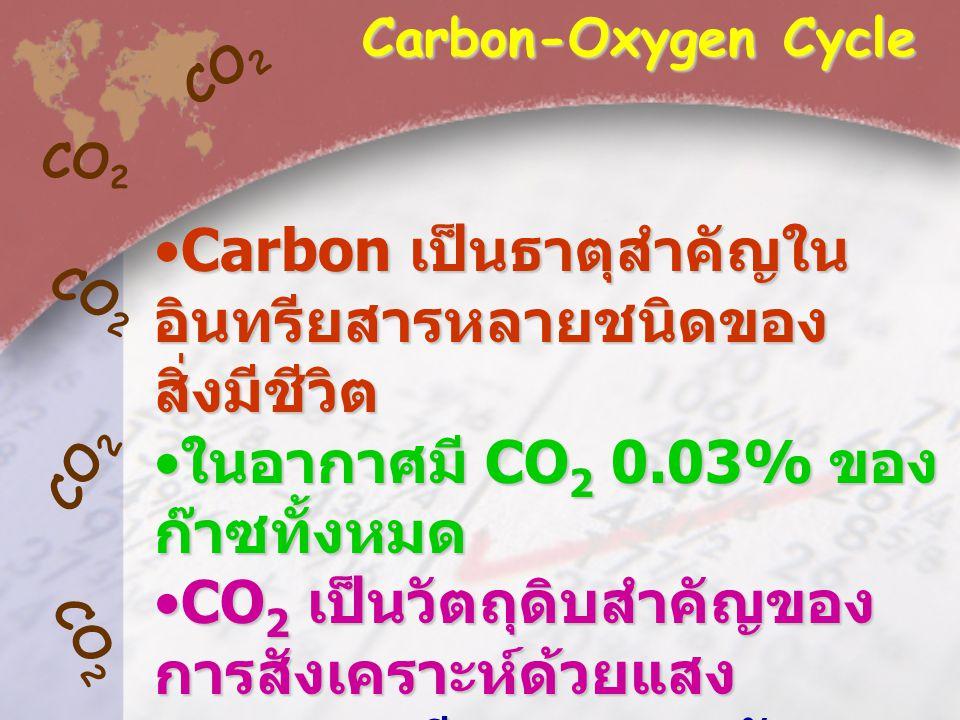 Carbon เป็นธาตุสำคัญในอินทรียสารหลายชนิดของสิ่งมีชีวิต
