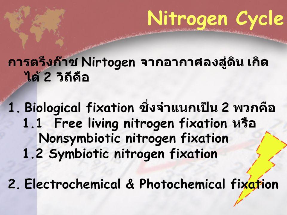 Nitrogen Cycle การตรึงก๊าซ Nirtogen จากอากาศลงสู่ดิน เกิดได้ 2 วิถีคือ