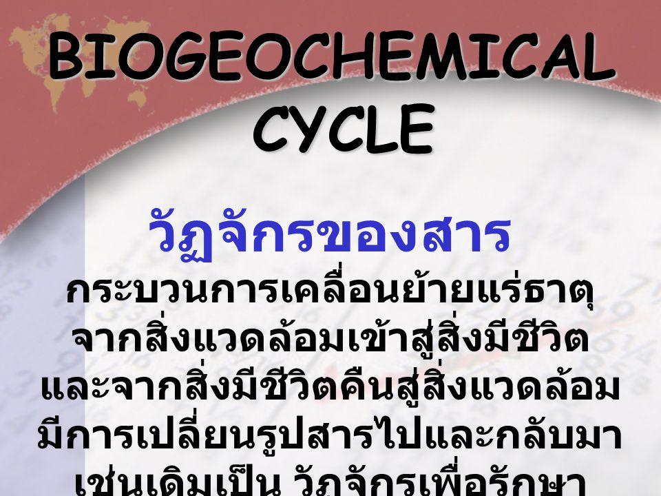 BIOGEOCHEMICAL CYCLE วัฏจักรของสาร