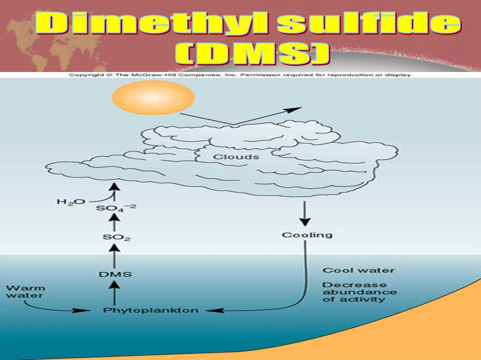 Dimethyl sulfide (DMS)