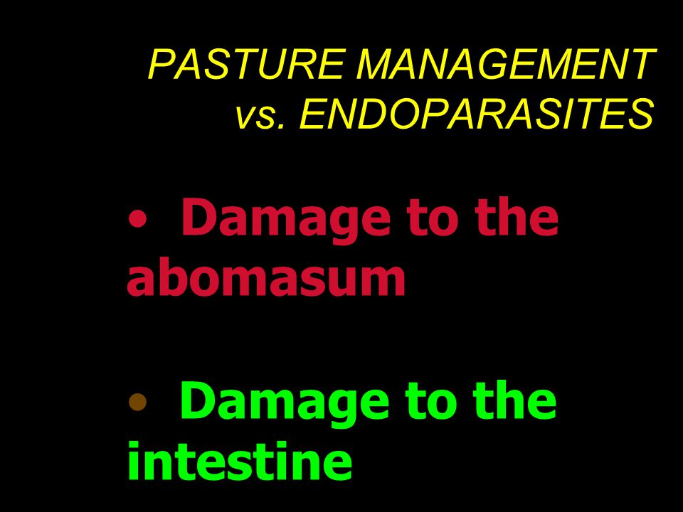 PASTURE MANAGEMENT vs. ENDOPARASITES