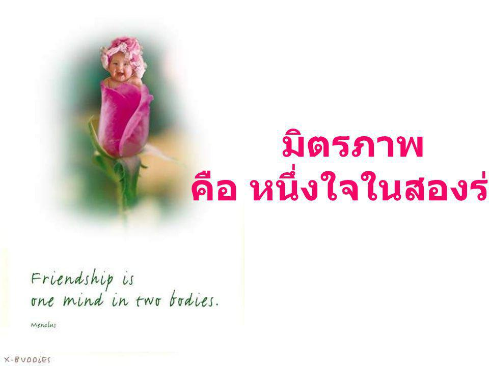 มิตรภาพ คือ หนึ่งใจในสองร่าง