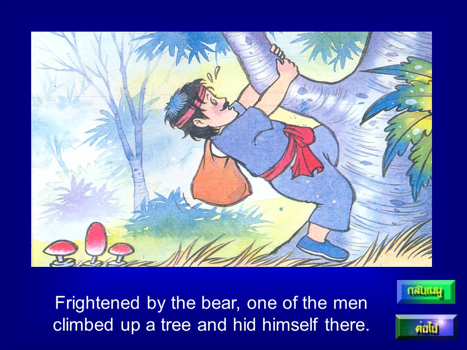 Frightened by the bear, one of the men climbed up a tree and hid himself there.
