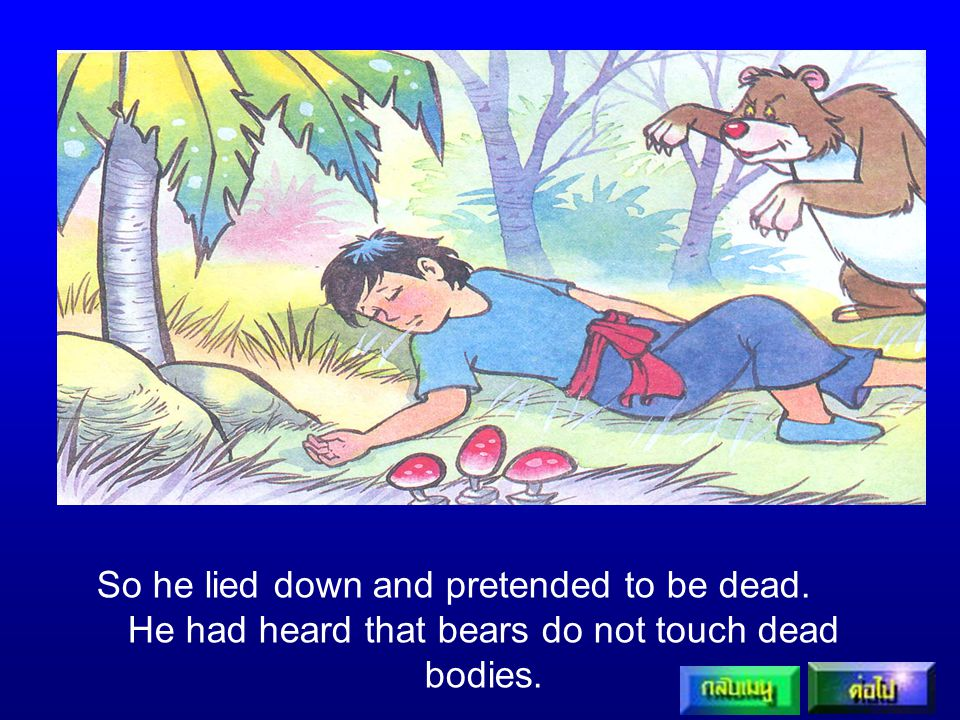 He had heard that bears do not touch dead bodies.
