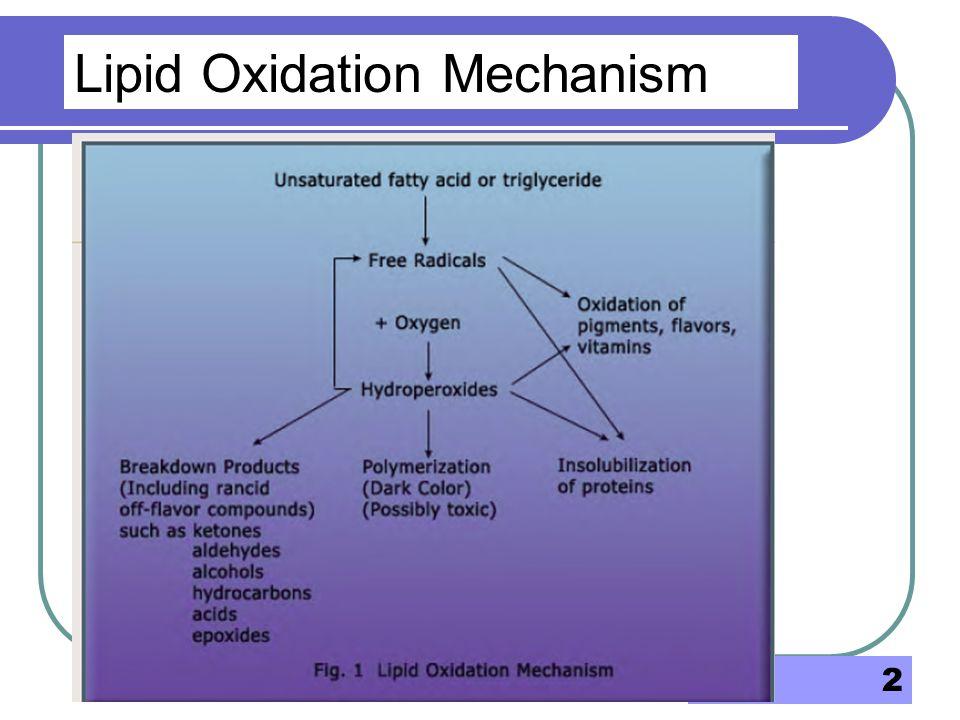 Lipid Oxidation Mechanism