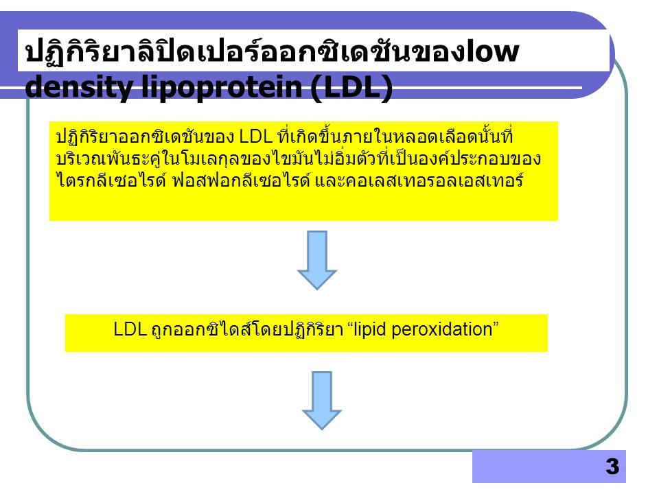 LDL ถูกออกซิไดส์โดยปฏิกิริยา lipid peroxidation