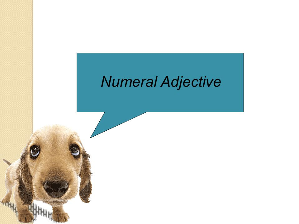 Numeral Adjective
