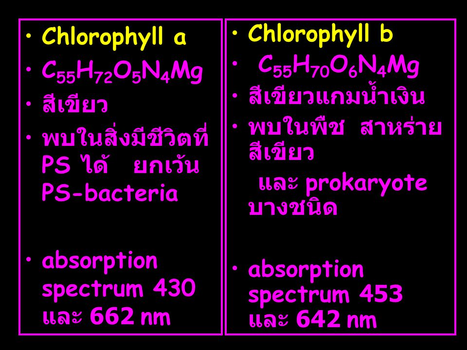 Chlorophyll a C55H72O5N4Mg. สีเขียว. พบในสิ่งมีชีวิตที่ PS ได้ ยกเว้น PS-bacteria. absorption spectrum 430 และ 662 nm.
