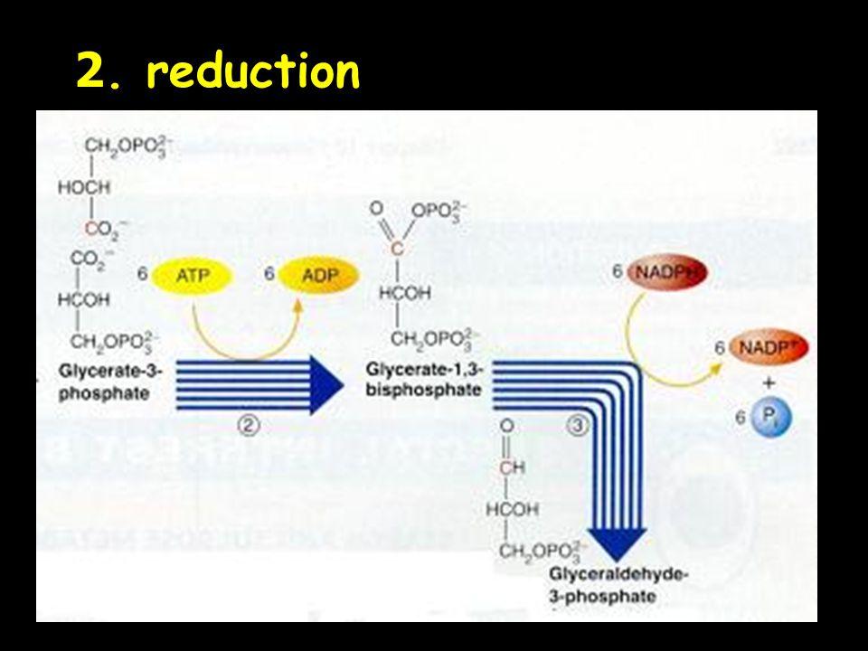 2. reduction
