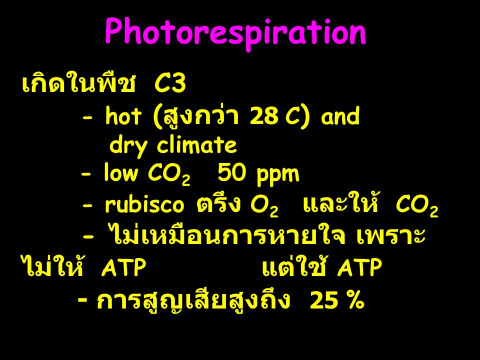 Photorespiration เกิดในพืช C3 - hot (สูงกว่า 28 C) and