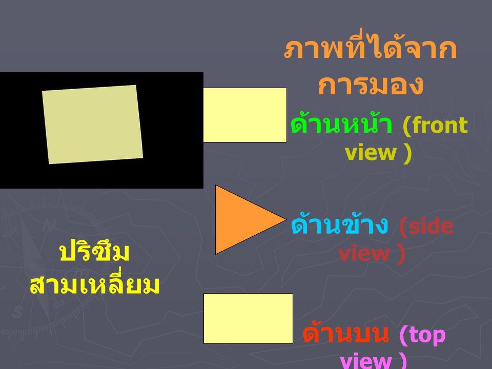 ภาพที่ได้จากการมอง ด้านหน้า (front view ) ด้านข้าง (side view )