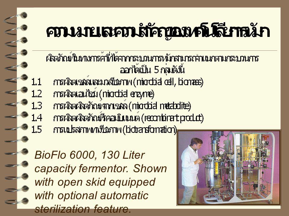 BioFlo 6000, 130 Liter capacity fermentor