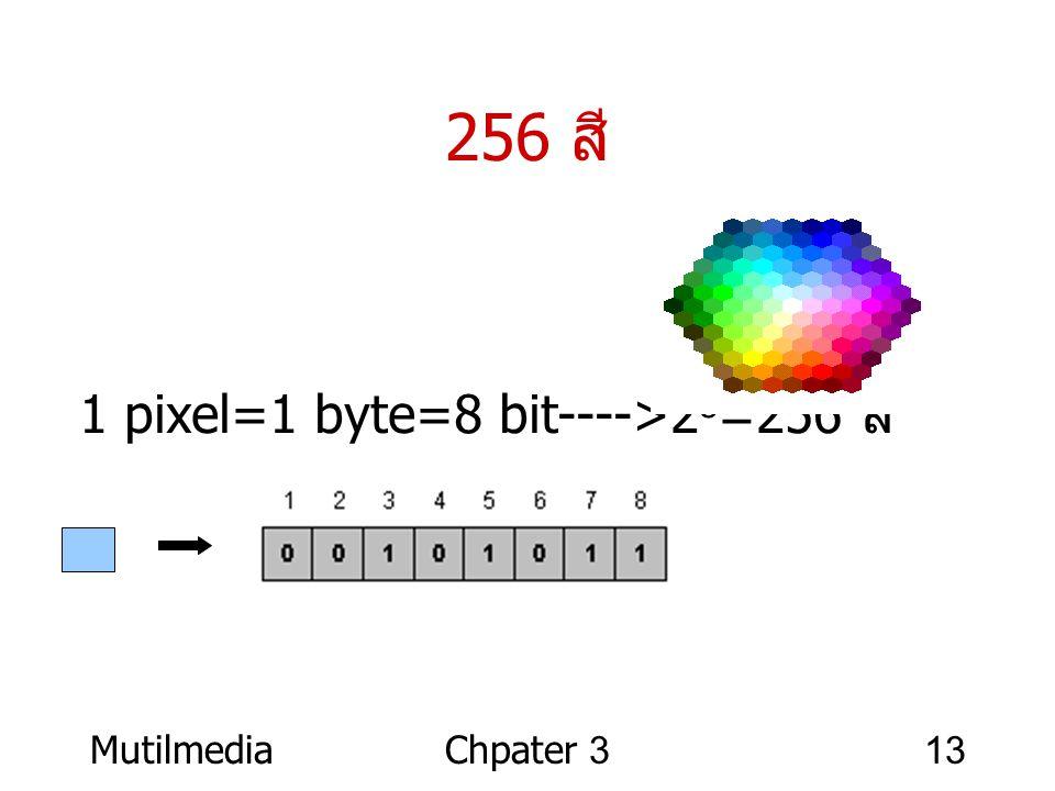 256 สี 1 pixel=1 byte=8 bit---->28=256 สี Mutilmedia Chpater 3