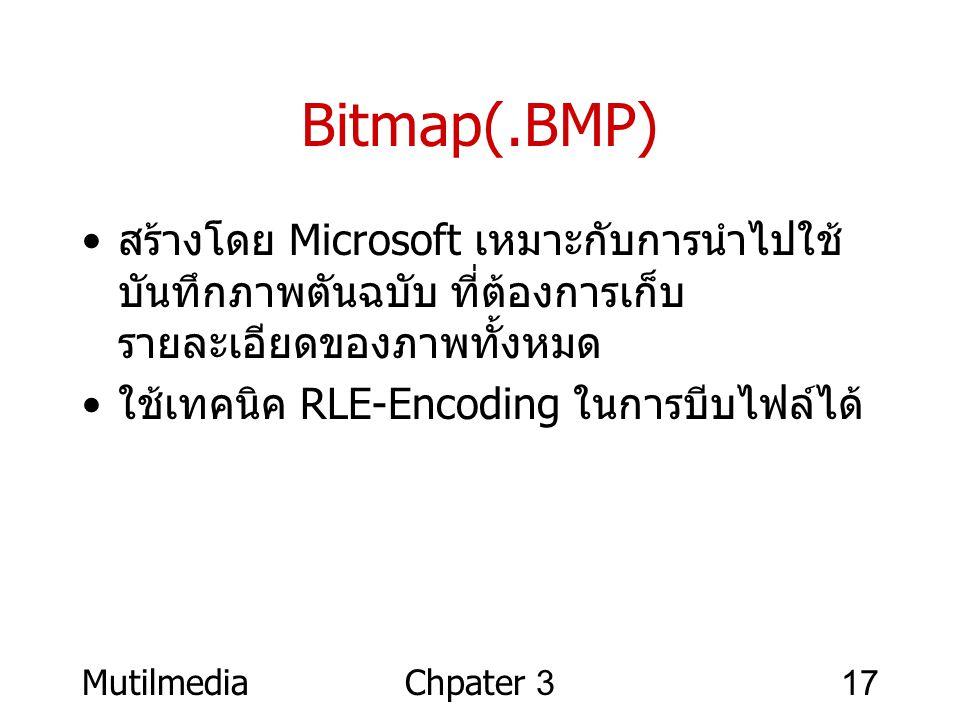 Bitmap(.BMP) สร้างโดย Microsoft เหมาะกับการนำไปใช้บันทึกภาพตันฉบับ ที่ต้องการเก็บรายละเอียดของภาพทั้งหมด.