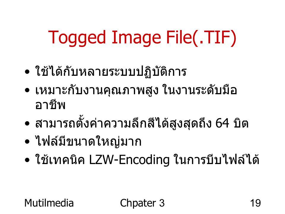 Togged Image File(.TIF)