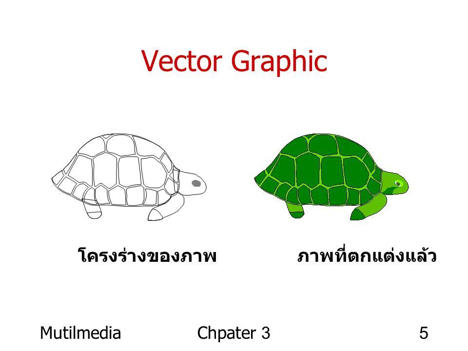 Vector Graphic โครงร่างของภาพ ภาพที่ตกแต่งแล้ว Mutilmedia Chpater 3