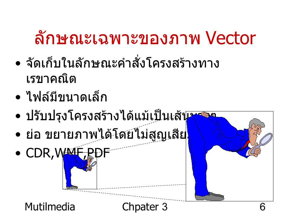 ลักษณะเฉพาะของภาพ Vector