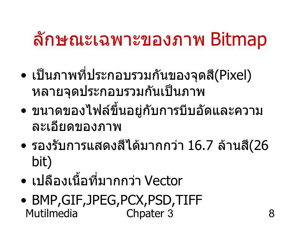 ลักษณะเฉพาะของภาพ Bitmap