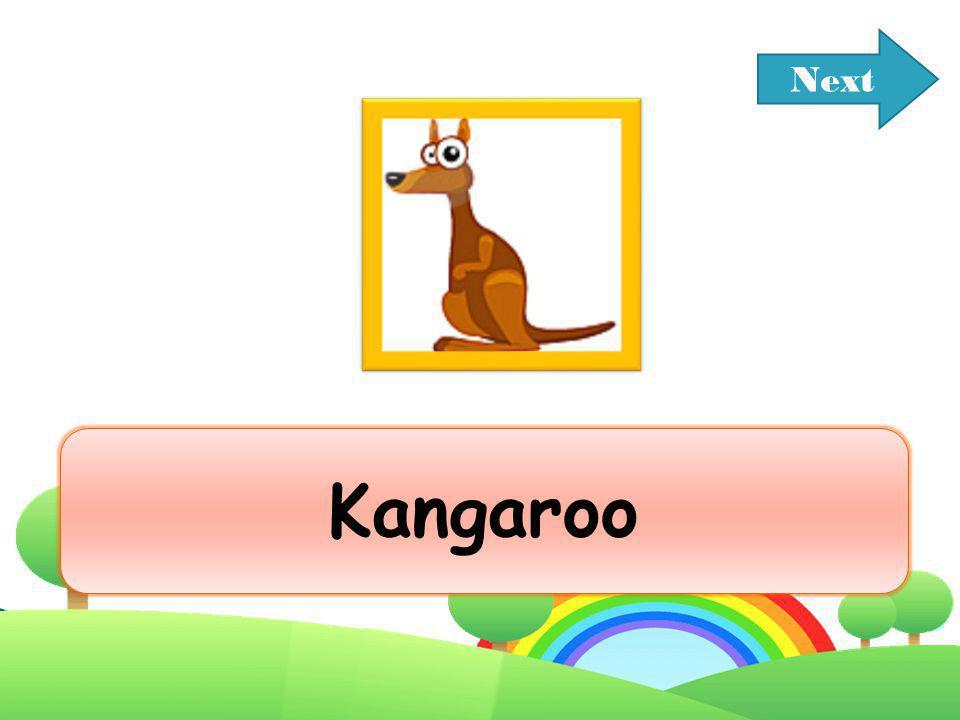 Next Kangaroo