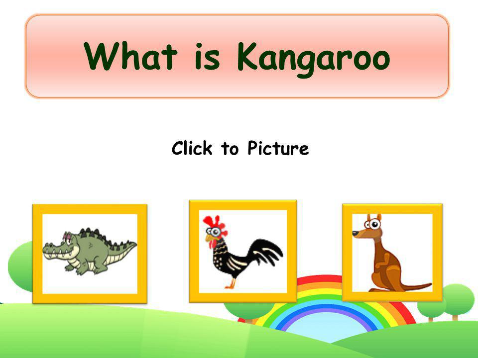 What is Kangaroo Click to Picture