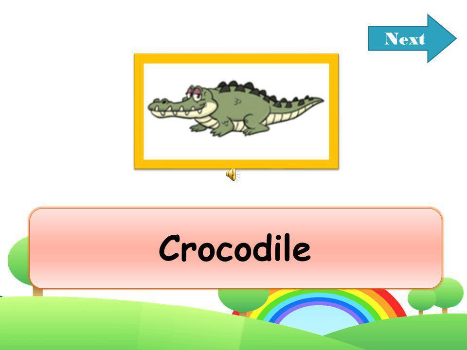 Next Crocodile