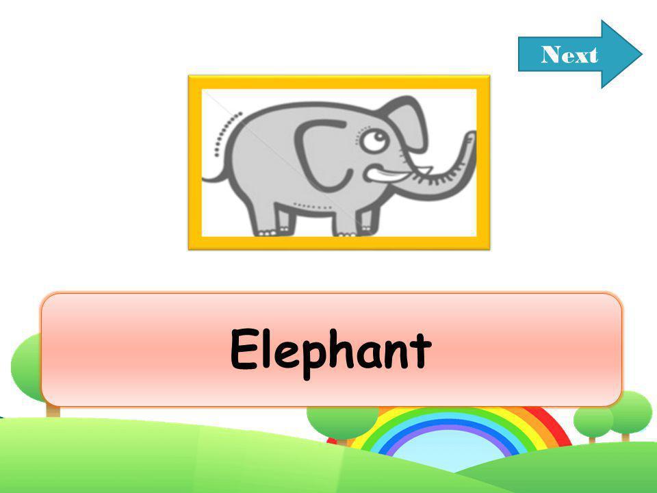 Next Elephant