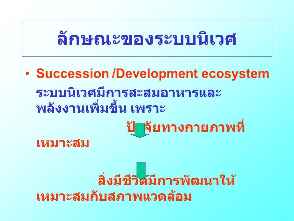 ลักษณะของระบบนิเวศ Succession /Development ecosystem