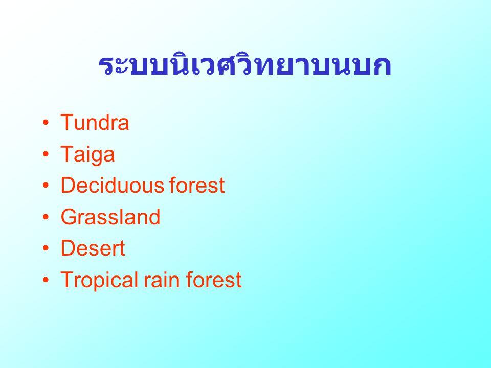 ระบบนิเวศวิทยาบนบก Tundra Taiga Deciduous forest Grassland Desert