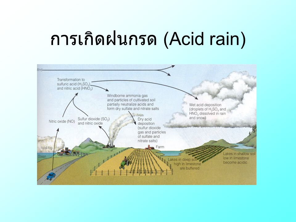 การเกิดฝนกรด (Acid rain)