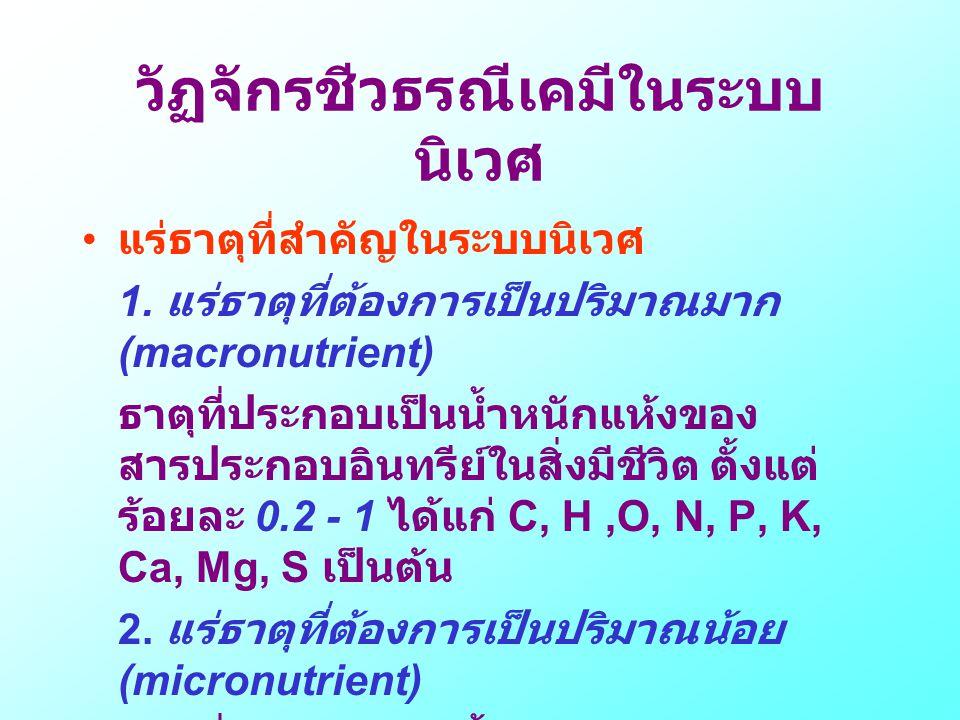 วัฏจักรชีวธรณีเคมีในระบบนิเวศ