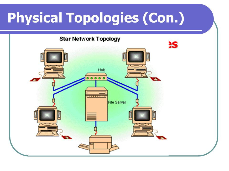 Physical Topologies (Con.)