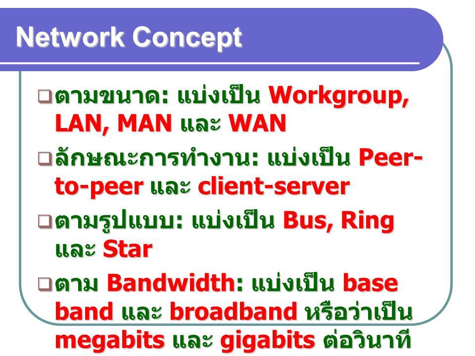 Network Concept ตามขนาด: แบ่งเป็น Workgroup, LAN, MAN และ WAN