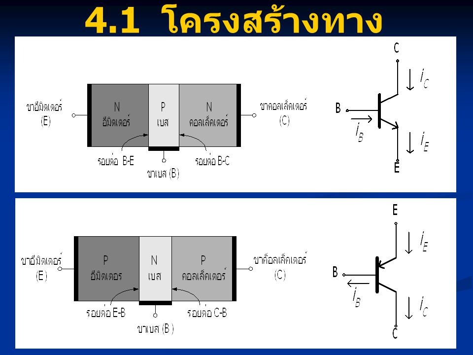 4.1 โครงสร้างทางกายภาพ