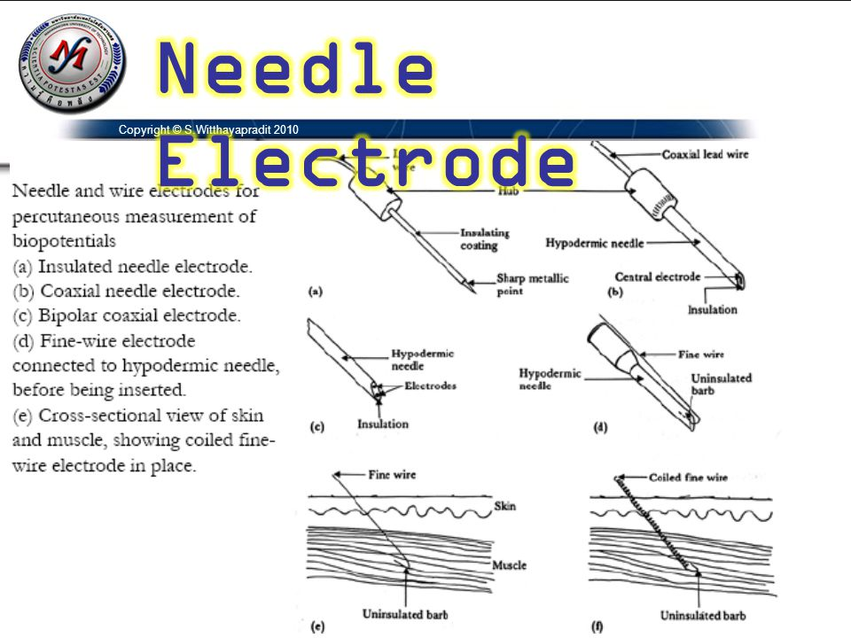 Needle Electrode Copyright © S.Witthayapradit 2010