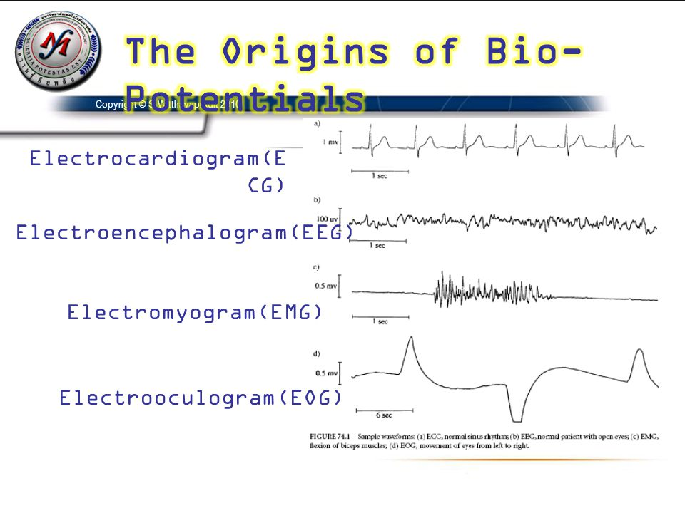 The Origins of Bio-Potentials