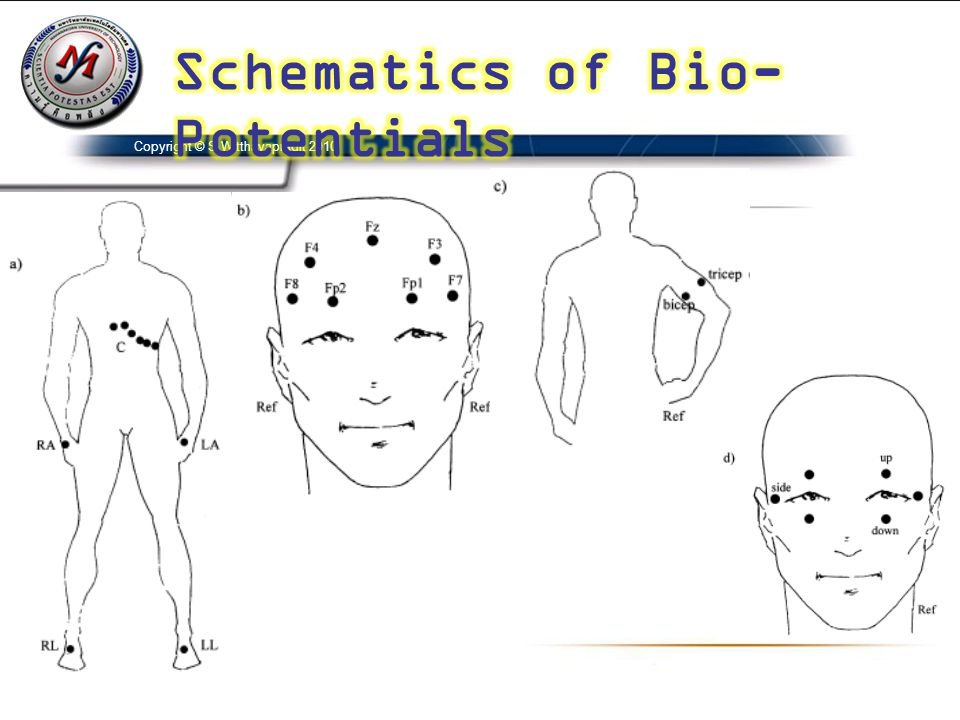 Schematics of Bio-Potentials