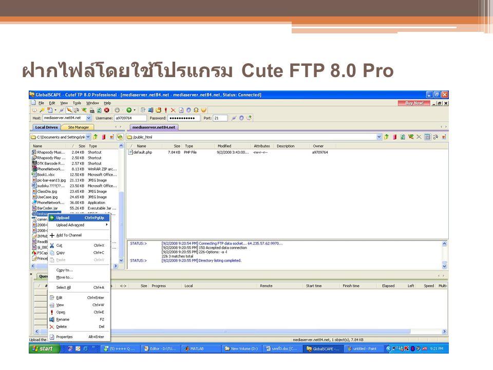 ฝากไฟล์โดยใช้โปรแกรม Cute FTP 8.0 Pro
