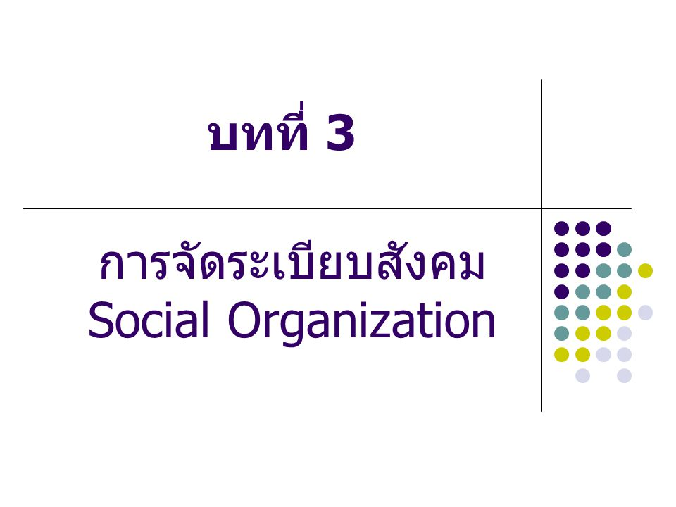 การจัดระเบียบสังคม Social Organization
