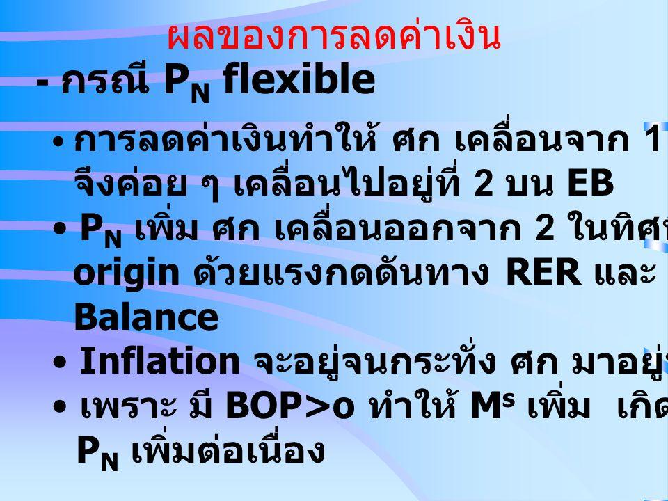ผลของการลดค่าเงิน - กรณี PN flexible