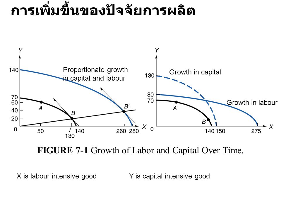 FIGURE 7-1 Growth of Labor and Capital Over Time.