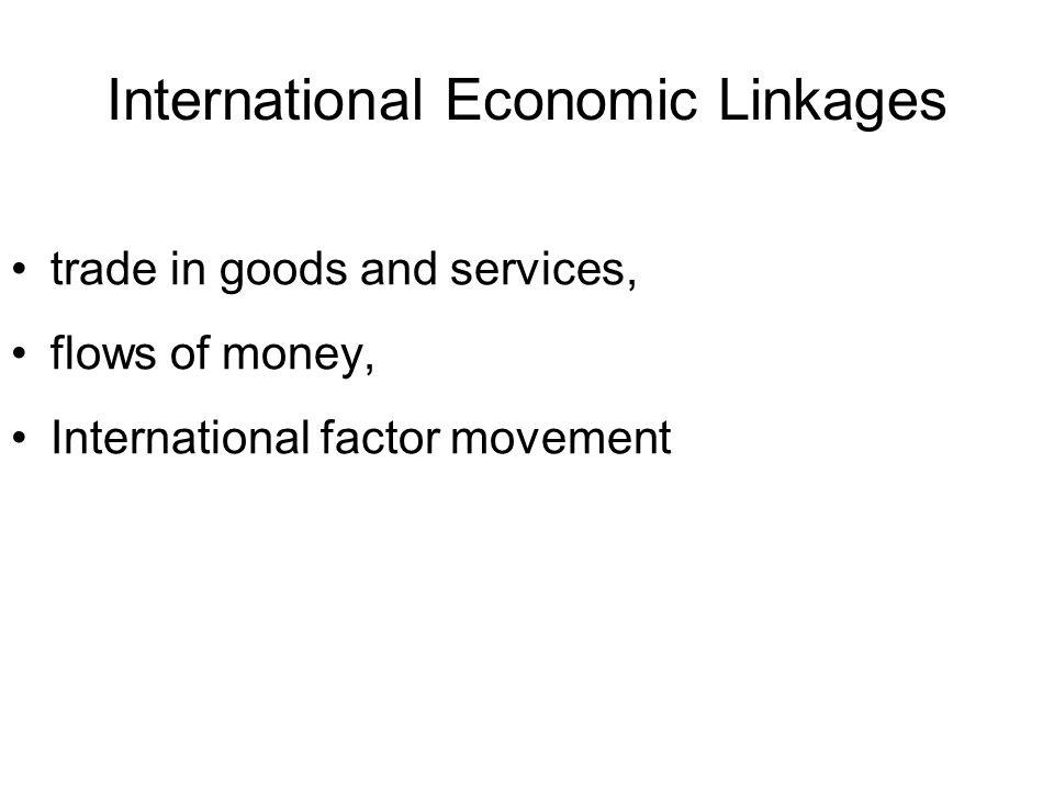 International Economic Linkages