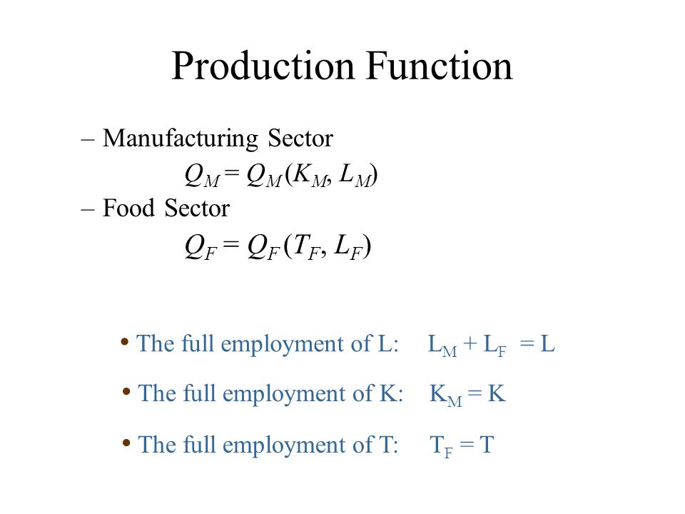 Production Function QF = QF (TF, LF) Manufacturing Sector