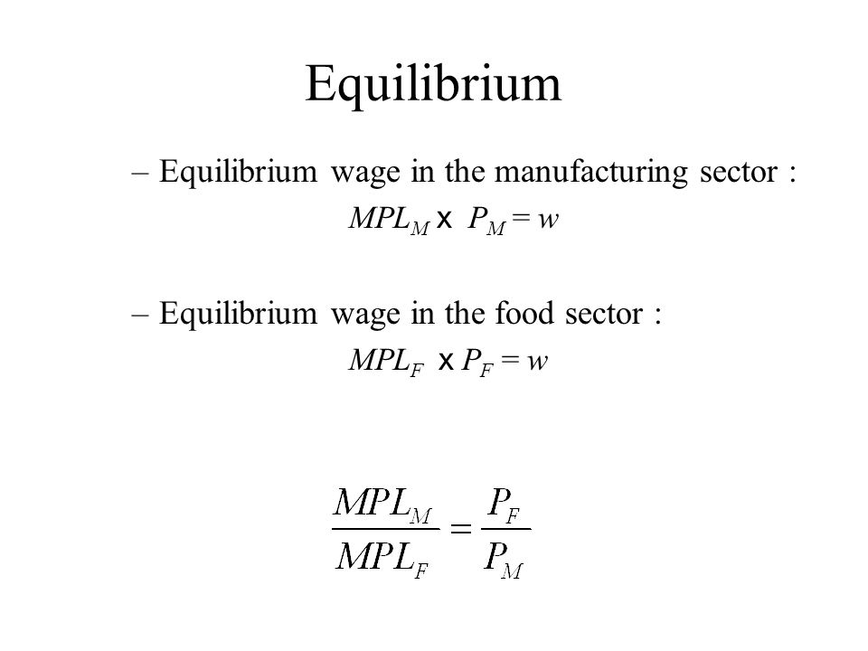 Equilibrium Equilibrium wage in the manufacturing sector :