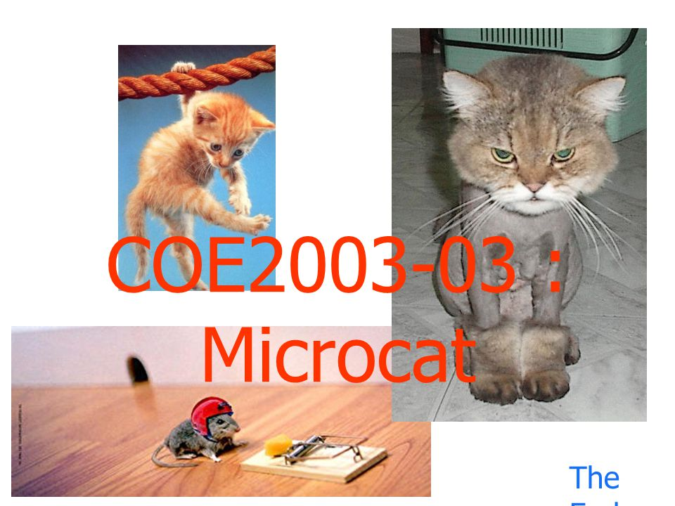 COE2003-03 : Microcat The End.